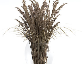 3D A bouquet of dried flowers