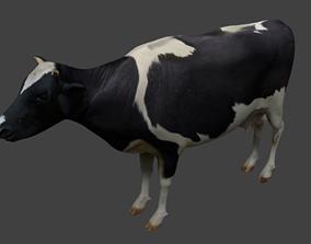 3D model Cattle