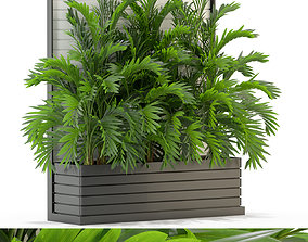 3D model Plants collection 322