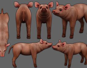3D asset piglet