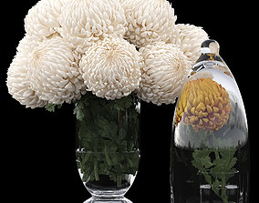 3D model Chrysanthemum small