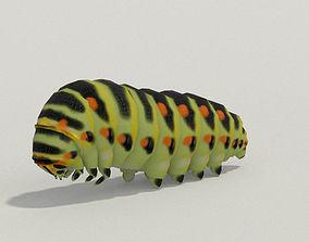 3D Caterpillar