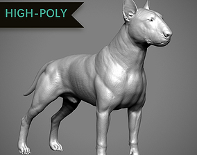 Bull Terrier High-Poly 3D printable model