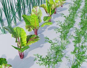 Vegetable patch 3D model