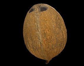 3D Coconut - low poly