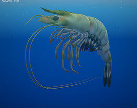 3D model Giant Tiger Prawn