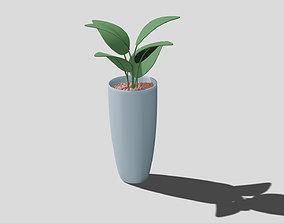 Pot plant vase 3D