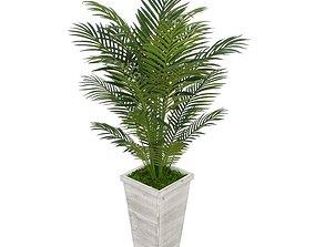 3D model Artificial Floor Areca Palm Tree in Planter