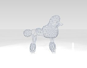 Poodle Wireframe 3D
