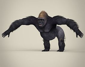 3D model game-ready Low Poly Realistic Gorilla