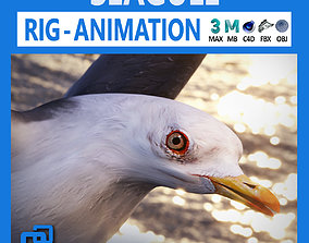 3D asset Animated Seagull