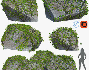 3D model Stone with ivy v1