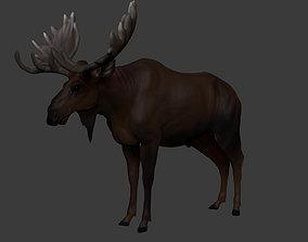 3D model realtime Moose