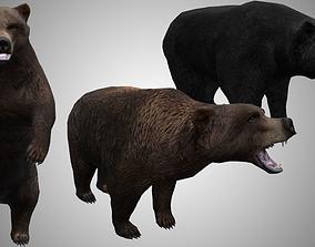 Bear lowpoly 3D model animated