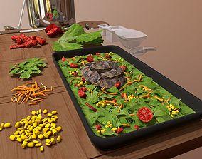 3D Kitchen tools and Salad