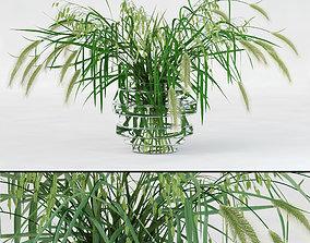 Northern Sea Oats and Pennisetum Green 3D model