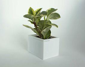 3D print model 003h - Planter - Small Rectangular -