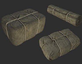 3D asset Bag Package Set