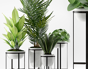 3D model PLANTS 236