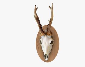 3D model Deerhead 002