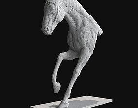Horse mammal 3D