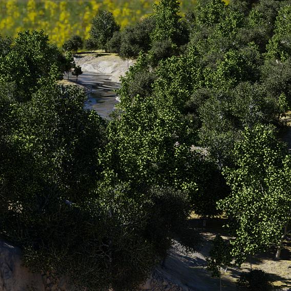 Landscape Experiments