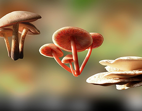 Game ready PBR Mushrooms 3D model SET 2 low-poly