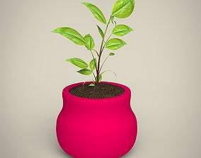 Plant agriculture 3D