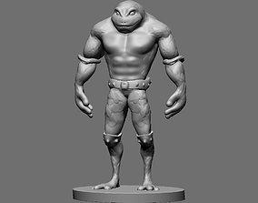 3D print model Battletoad
