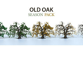 3D model Old oak season pack