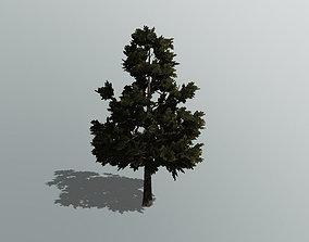 low-poly 3D Pine Tree