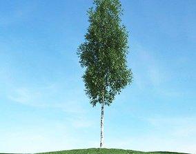 spring Green Leafy Tree 3D model