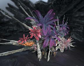 3D asset Alien Vegetation collection 1