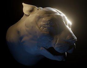 3D Tiger high poly sculpt