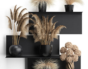 3D model collection of dried flowers in vases
