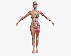 Ultimate Complete Female Body Anatomy 3DSmax