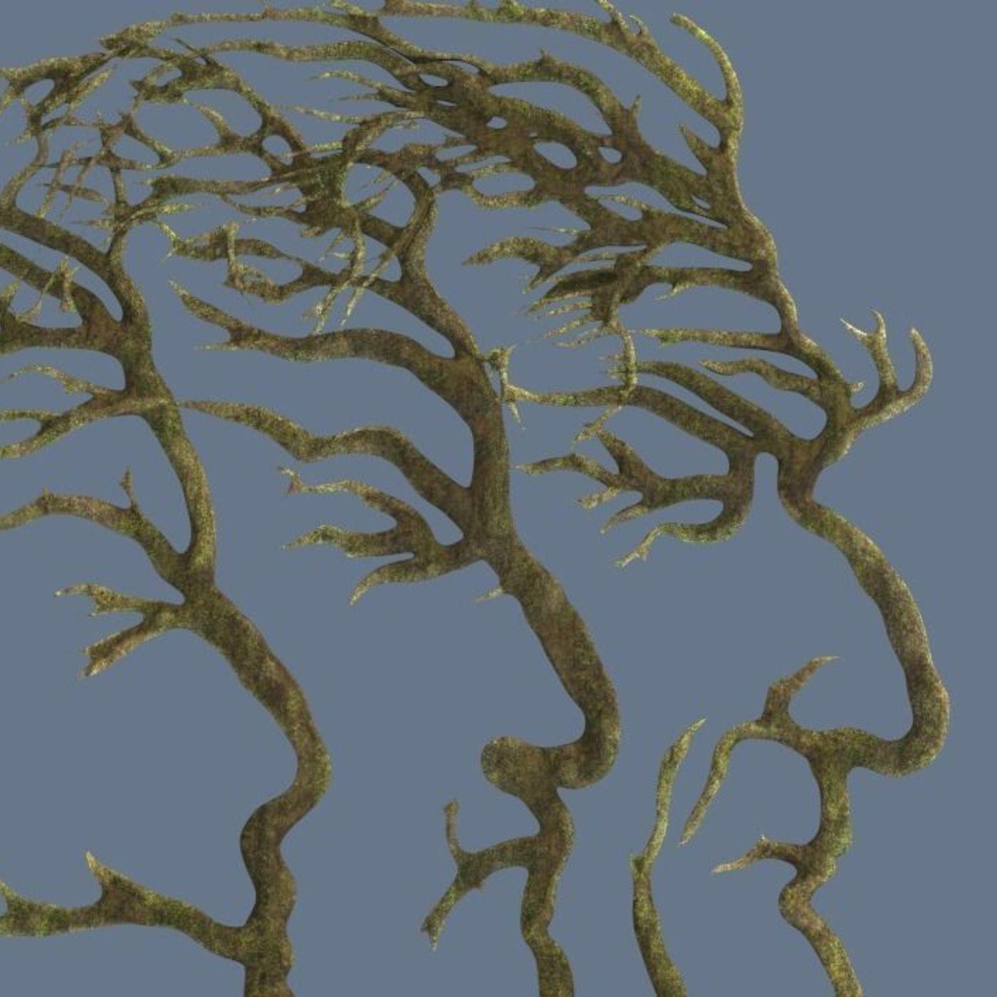 People silhouette trees