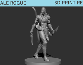 3D printable model Female Rogue Ranger miniature