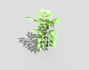 3D asset game-ready Low poly Plant grass