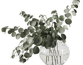 3D model Eucalyptus bouquet