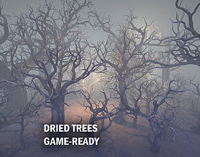 3D model Dried trees