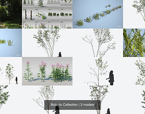 Botanic Collection 3D