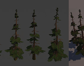 3D asset Stylized Handpainted Pine Tree