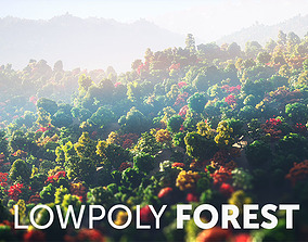 Low Poly Forest Summer Autumn Winter 3D model