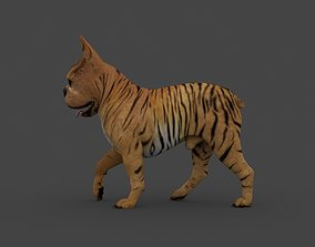 UVWD-010 Dog Textures Only 3D
