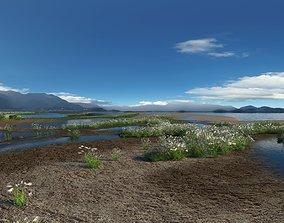Wetland park landscape 02 3D animated