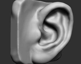 Ear Model 3D