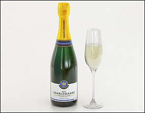 Champagne with glass 3D model