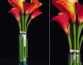 3D Plant 16