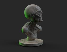 3D print model Grey Alien Bust
